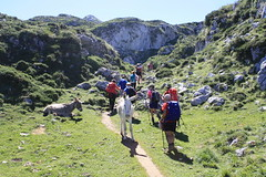 "Picos de Europa 2017 216 <a style=""margin-left:10px; font-size:0.8em;"" href=""http://www.flickr.com/photos/122939928@N08/35948131472/"" target=""_blank"">@flickr</a>"