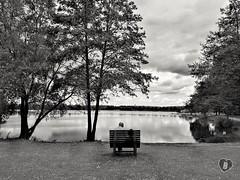 ENJOYING THE LAKE #couple #trees #Schweinfurt #Baggersee  #lake #enjoy #Landschaft #landscape #blackandwhite #schwarzweiß #Photographie #photography (benicturesblackwhite) Tags: blackandwhite landscape landschaft baggersee couple enjoy photography schwarzweis lake schweinfurt photographie trees
