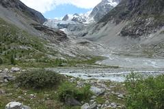 Glacier du Mont Miné (bulbocode909) Tags: valais suisse ferpècle valdhérens vallondeferpècle leshaudères glacierdumontminé glaciers moraine paysages vert bleu montagnes nature arbres neige