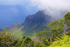 Emerging from the Mist (Grazerin/Dorli B.) Tags: kauai hawaii island view napalicoast mist cloud green tropical elements