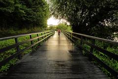 On the boardwalk (Eimhear Collins) Tags: boardwalk drogheda colouth riverboyne oldbridge eimhearcollins