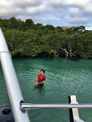 M, immersing to anchor us in the lagoon. Middle Percy Island.