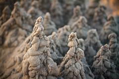 20160812-IMG_1359 (ranzino) Tags: jerseyshore newjersey stoneharbor beach drippycastles nj ocean sand sandcastles vacation unitedstates us