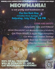 TOMORROW! 2-6 PM, cat related clothing is encouraged! BYOC! (Or adopt some while you're there!) (Jimmy Legs) Tags: tomorrow 26 pm cat related clothing is encouraged byoc or adopt some while youre there