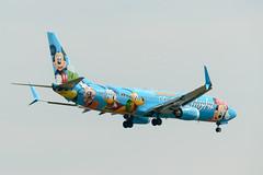 """N318AS Alaska Airlines Boeing 737-990(WL) """"Disneyland"""" (Lin.y.c) Tags: n318as alaska airlines boeing 737990wl alaskaairlines 737900wl 739 739wl 737 737900 disney disneyland kind ind 201707 23r"""