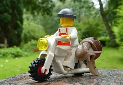 Hitching a ride (captain_joe) Tags: toy spielzeug 365toyproject lego minifigure minifig schnecke snail bike motorrad motocycle