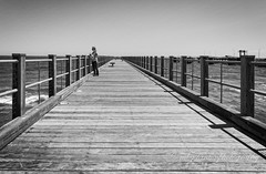 the end (mgstanton) Tags: mv17 marthasvineyard vacation oakbluffs pier bw blackandwhitephotography
