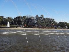 DSC09994 (fyoshino) Tags: 2017 curitiba paraná brasil parque tanguá