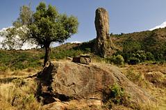 God's finger - Gondar - Ethiopia (PascalBo) Tags: nikon d300 ethiopia ethiopie amhara gondar gonder africa afrique eastafrica afriquedelest hornofafrica cornedelafrique rock rocher landscape paysage outdoor outdoors pascalboegli tree arbre