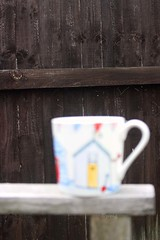 14/07/2017 Dreaming of summer (Pat's_photos) Tags: fence mug 365