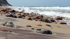 Берег в Донском (klgfinn) Tags: balticsea beach bokeh landscape sand sea shore skyline stone summer water wave балтийскоеморе берег боке вода волна горизонт донское камень лето море пейзаж песок пляж