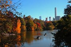 Natural Frame III: Sailing at Central Park (M. Paula Zuluaga) Tags: pond centralpark manhattan newyork autumn nueva york otoño naturalframe sailing boat fall autumntones reflections lake uppereastside