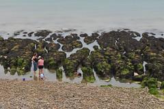Rockpooling (G Reeves) Tags: nikon nikond300 garyreeves seafront beach sea waves water rottingdean eastsussex brighton people rockpooling green