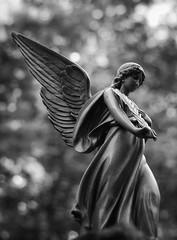 Angel in black@withe (steinmann1969) Tags: bergfriedhof heidelberg blackwithe kunst statue angel engel