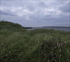 High Summer (North Light) Tags: coast spoilheap july dunnetbay caithness scotland