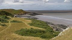 Landscape - SandPoint - Middlehope-2 (oldparson) Tags: nationaltrust sandpoint sea woodspring coast landscape limestone sandbay