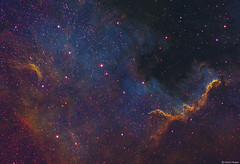 The Cygnus Wall in a different light (Martin_Heigan) Tags: cygnuswall astrophotography telescope dso space deepsky narrowband qhy163m wostar71 williamoptics refractor ngc7000 ha oiii sii pixelmath pixinsight astronomy science physics martin heigan astroimaging stars nebula deepskyobject coldmos cooledcmos july2017 wrac msp sgp starparty southafrica northamericanebula halpha hydrogenalpha sho monochromecamera astronomycamera widefield ansvr spectra wavelengthsoflight spectralline spaceart colorsofspace elements ngc6997 65nm light mhastrophoto optolongshofilters qhyccd qhy polemaster avx southernhemisphere qhycfw2musfilterwheel optolong hst hubblepalette amateurastronomy firstlight capturinglight collectingphotons universe cosmos paintingwithlight backyardastronomy backyardastrophotography southernskies nightsky doublyionizedoxygen electromagneticspectrumoflight