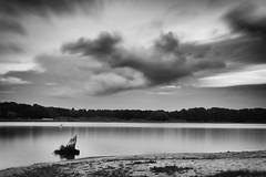 (Px4u by Team Cu29) Tags: wasser ufer see westhavelland langzeitbelichtung wolken himmel wurzel gras wiese baum haus boje