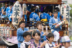 Namikicho Summer Festival 2017 (Apricot Cafe) Tags: img46593 asia asianandindianethnicities canonef70200mmf28lisiiusm ceremonialdancing dashifloat japan japaneseethnicity strength traditionalceremony celebration ceremony cheerful chibaprefecture cultures happiness lifestyles matsuri outdoors people photography smiling teamwork traditionalclothing traditionalfestival 並和會 並木町 naritashi chibaken jp