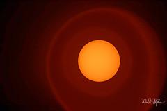 "Sun At 1,000mm with Solar Filter (dcstep) Tags: n7a8936dxo englewood colorado unitedstates us ef20xtciii sun solarfilter induro arcaswissz1ballhead wimberleysidekick canon5dmkiv ef500mmf4lisii allrightsreserved copyright2017davidcstephens dxoopticspro114 ""cherry creek state park"" cherrycreekreservoir"