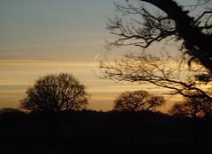 Seen through a train window - dawn on the Lincoln to Nottingham 6 (Street.Watcher) Tags: lincoln nottingham railway sunrise landscape collingham
