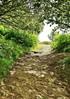28368 (benbobjr) Tags: worcestershire worcester midlands westmidlands westmercia herefordandworcester greatmalvern malvern malvernhills herefordshire herefordshireworcestershireborder hillsofworcestershire marilynsofengland path pathway footpath bridleway publicfootpath precambrian gneous metamorphic severnvalley moelbryn barehill moelfryn baldhill malferna malverne muchmalvern jabezallies antiquarian vern sarn varn malvernwater biologicalandgeologicalsiteofspecialscientificinterest nationalcharacterarea103 naturalengland areaofoutstandingnaturalbeauty countrysideagency sssi grassland woodland geologicalsite themalvernhillssssi forestofdeanlocalplanreview keywildlifesite kws malvernhillsconservators shireditch bronzeageboundaryearthwork wychecutting mountainpass prehistorictimes saltroute metalmoneybars latènepeople ancientfolklore britishchieftain romans britishcamp ironageearthworks jrrtolkien cslewis georgesayer headofenglish malverncollege thehobbit thelordoftherings gramophonerecord jrrtolkienreadsandsingshisthehobbitthefellowshipofthering whitemountainsofgondor sugarloafhill worcestershirebeacon worcesterbeacon