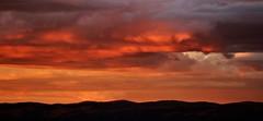 Sunset from Chisholm Hill (~Jek~) Tags: aus australia australiancapitalterritory canberra chisholm geo:lat=3541083471 geo:lon=14913714051 geotagged sunset treesilhouette treesilhouetteagainstsunsetsky