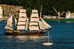 Picton Castle (langdon10) Tags: canada canada150 canon70d quebec ship shoreline stlawrenceriver tallship nautical outdoors