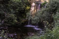 El último rayo de sol.  (Parque natural sierra de Guadarrama) (M.L.C.*) Tags: agua cascada flores arboles sol piedras naturaleza natura water waterfall