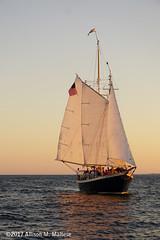 The Adirondack out on a sunset cruise of Narragansett Bay. (A.Maltese) Tags: sailboat boat mast sails narragansettbay sunset seascape outdoor adirondack ship