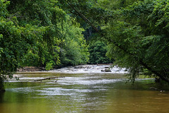 Tumbling Shoals - Reedy River - S.C. (DT's Photo Site - Anderson S.C.) Tags: canon 24105mml lens reedy river laurens south carolina upstate muddy tumbling shoals rapids rocks fishing trees vanishing america usa landscape canoe southernlife