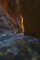 Canyon Flame (Forget Me Knott Photography) Tags: zion zionnationalpark utah desert canyon zioncanyon slotcanyon light glow virginriver river creek stream wallstreet water rocks