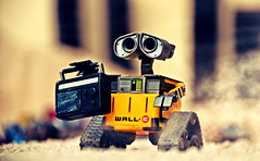 WALL-E (RK*Pictures) Tags: walle actionfigure toy pixar disney sciencefiction future robot eve earth contaminated garbage buynlarge trashcompactor cleanup unit seedling plant allterraintreads mobilecompactorbox shovelhands threefingered binoculareyes solarcells trinkets yellow dust abandoned thinkwaytoys curiosity hellodolly music comedy animation movie computeranimated desertedworld socialcriticism wasteallocationloadlifter–earthclass radio consumerism nostalgia globalcatastrophicrisk wastemanagement galaxy obesity space love cute planet spaceship cockroachfriend hal kiss life personality environment time humans adventure rescue brave energy waste escape fun treasures mankind lonely trash romantic machine function actionfigurephotography rkpictures