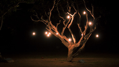 Tree in the Dark Nusa Dua Light Festival, 15 July 2017