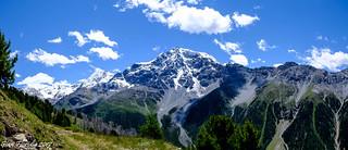 Sua Maestà Cima Ortles (3905 m)