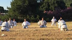 2017_kyokushinhellas_summercamp_1573