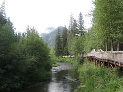 Alaskan River (artofjonacuna) Tags: alaska river salmon