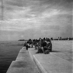 Sea Organ of Zadar (Koprek) Tags: yashica mat 124g fomapan 200 film streetphotography zadar croatia adriatic june 2017 sea organ