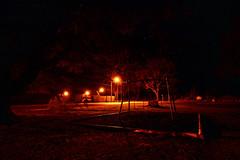 Night swings by in Urbania (Kevin_Jeffries) Tags: swings longexposure kevinjeffries nikon nikkor d7100 streetlight childsplay playground night lowlight landscape stars