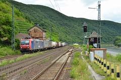 SBBC 482 015, Kaub (Sander Brands) Tags: trein treni train treno trenuri züg güterzug züge kbs sbb cff ffs cargo re 482 klv bertschi kaub rhein rheintal