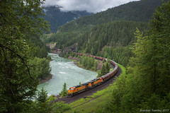 BNSF near West Glacier, MT (Brandon Townley) Tags: trains railroad bnsf mariaspass mnountains glaciernationalpark green grain montana