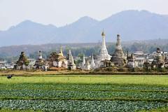 Kayah State Pagodas (@Mark_Eveleigh) Tags: asia asian burma burmese east indochina myanmar south kayak pagoda temple buddhist