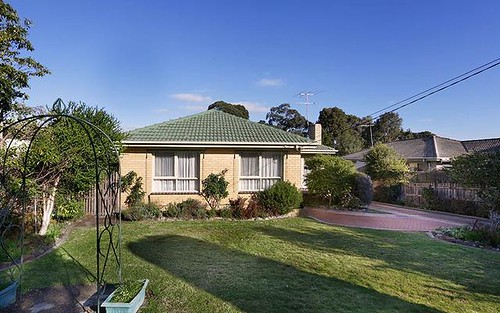 24 Darbyshire Rd, Mount Waverley VIC 3149