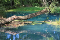 parco lavino (Maria Teresa D) Tags: panorama parco riservanaturale natura fiume azzurro verde blu paesaggi lavino decontra