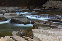 Williams River (ashockenberry) Tags: river nature flow current williams whitewater cold water west virginia webster county