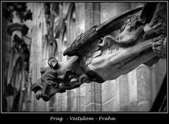 Gargoyles - 24 (fotomänni) Tags: prag prague praha gargoyles gargouille wasserspeier skulptur skulpturen veitsdom blackwhite schwarzweis noirblanc manfredweis