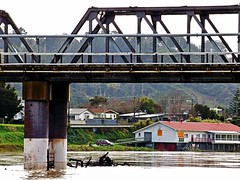 rowing club (minitanker) Tags: railway bridge rowing boat club water river whanganui new zealand driftwood debris landscape