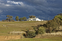 Threatening skies at Millamong Woolshed, Mandurama, NSW (darrylkirby) Tags: woolsheds stormyskies clouds darkclouds weather