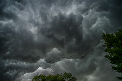 More backyard stuff (pmecpa22) Tags: clouds angryclouds angry grey gray