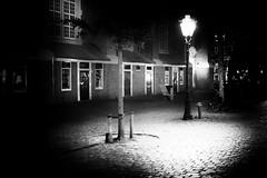 July 03, 2017.jpg (pavelkhurlapov) Tags: noir cobblestone monochrome pinhole shadows light bicycle trees buildings lamppost night